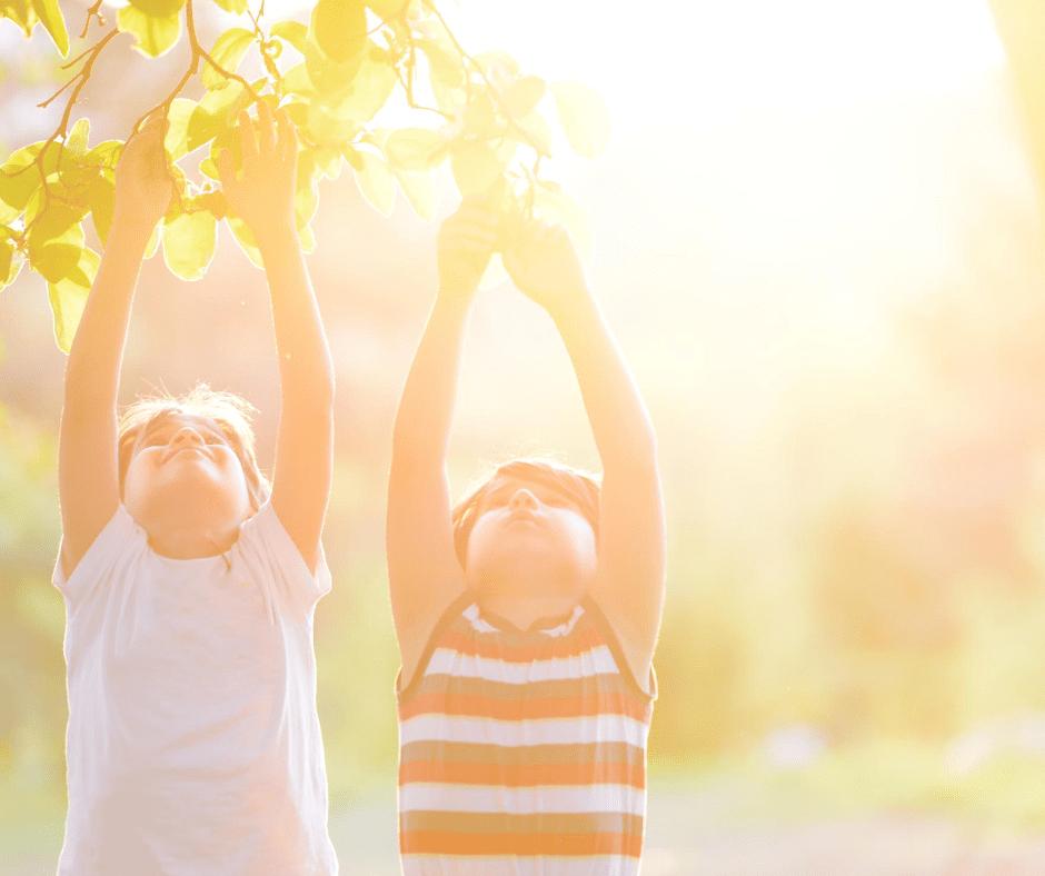 vitamin d boost immunity