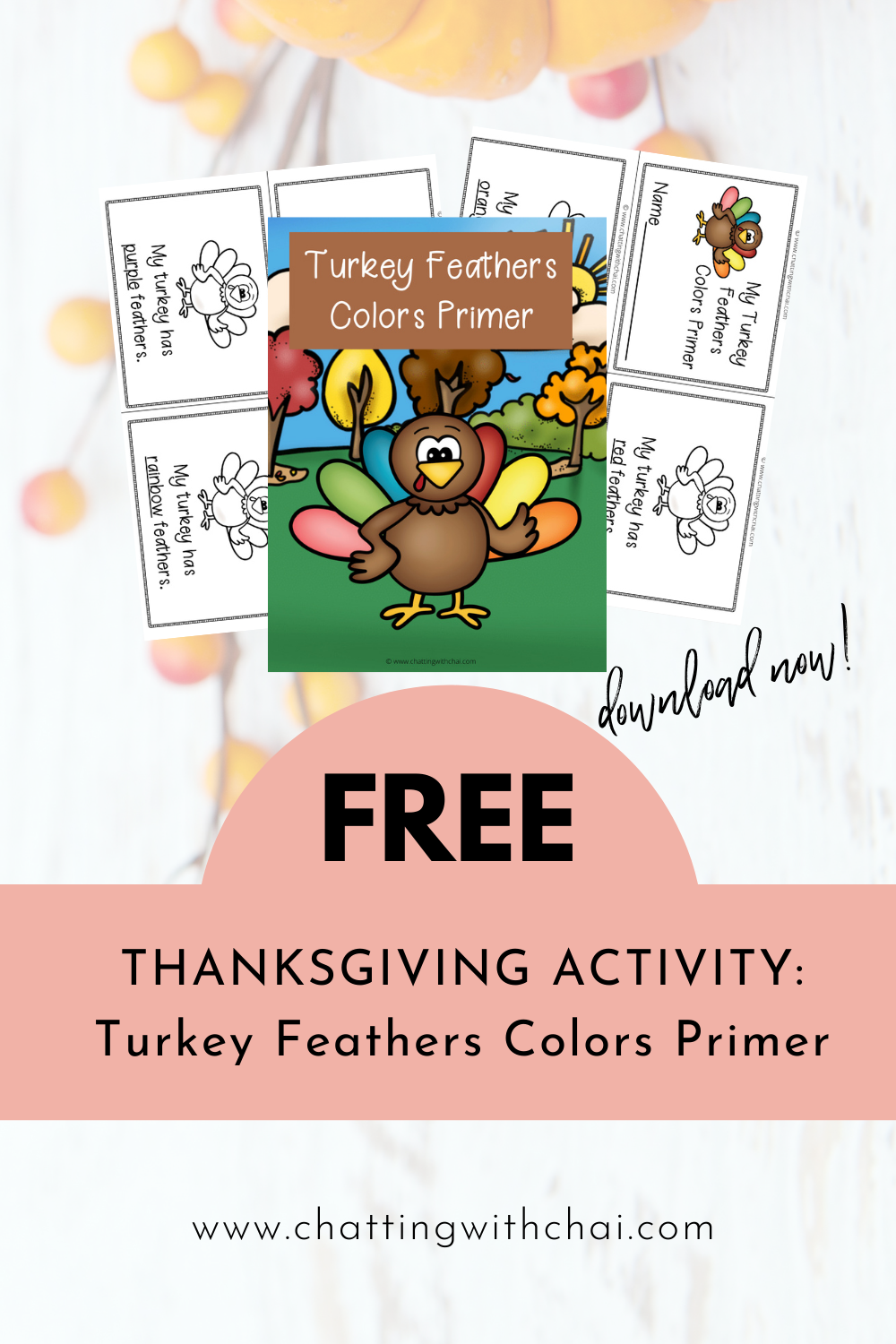Turkey Feathers Activity